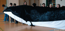 A special experience: To hold up a minke whale at the head...